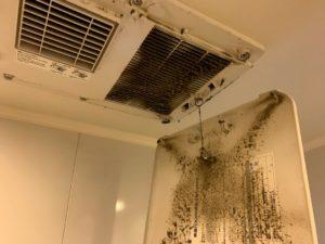 浴室の換気扇汚れ