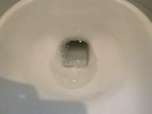 緑の魔女でトイレ掃除