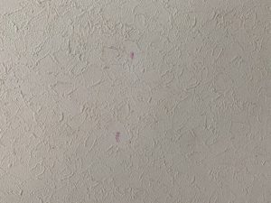 壁のシミを落とす